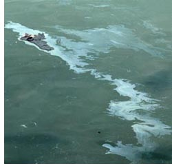 oil spill photo november 8 2007 by franke james